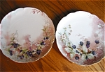 Click here to enlarge image and see more about item limoges90525z: Limoges Plates Haviland Antique