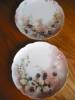 Click to view larger image of Antique Haviland Limoges Plates  (Image6)