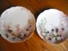 Click to view larger image of Antique Haviland Limoges Plates  (Image7)