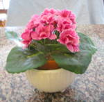 Click to view larger image of McCoy MCP Vase Planter (Image2)