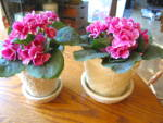 Click here to enlarge image and see more about item mortonpots0916: Morton Pottery Vintage Planters