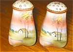 Click here to enlarge image and see more about item nippon50401: Nippon Hand Painted Shakers