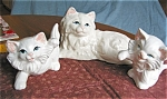 Click here to enlarge image and see more about item pmort06061: Vintage Morton Pottery Cat Set