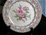 Click here to enlarge image and see more about item rosenthal120514: Rosenthal Vienna Salad Plates