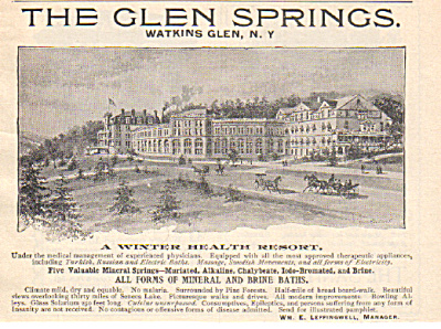 1893 GLEN SPRING Resort AD Watkins NY (Image1)