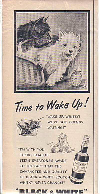 1954 BLACKIE WHITEY Black White TIME WAKE UP (Image1)