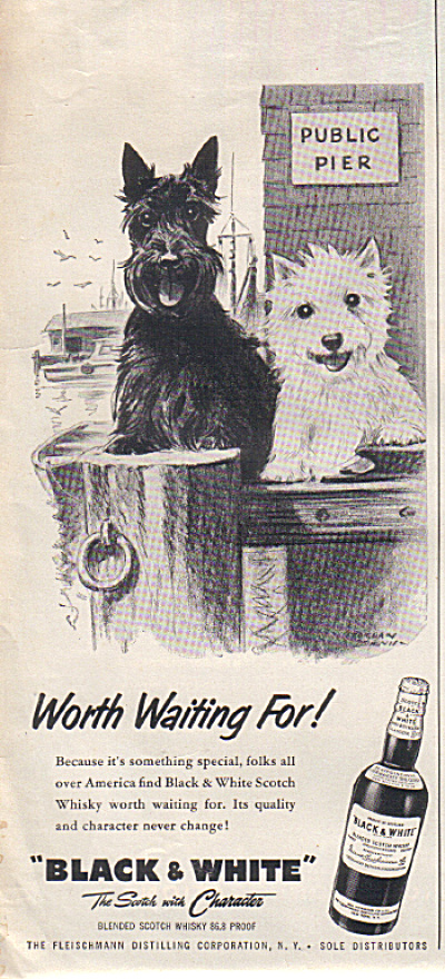 1957 Black & White Public Pier Scotty Dogs Ad (Image1)