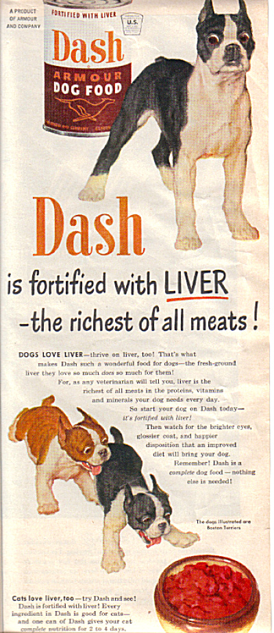 1951 Dash BOSTON TERRIER Dog Food AD (Image1)