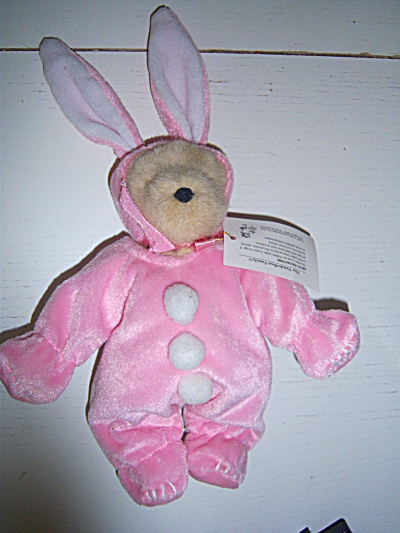 1991 Muffy VanderBear as Muffy Bunny EXCELLENT Pink  (Image1)