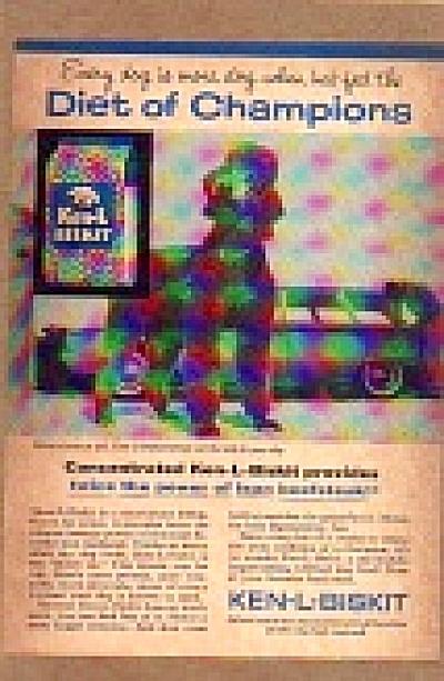 1961 Ken-L-Biskit Poodle Dog Ad (Image1)