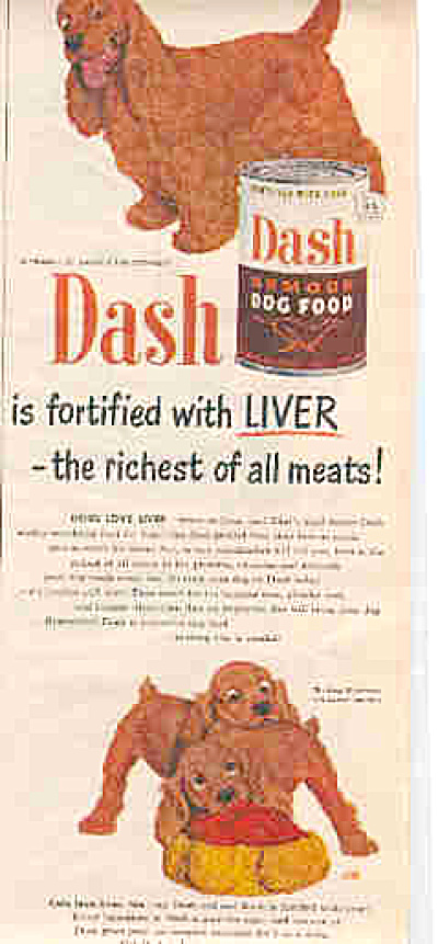 1951 Dash Dog Food Cocker Spaniel Dog Ad (Image1)