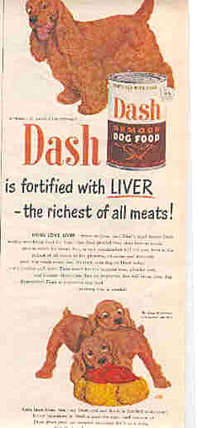 1951 Dash Dog Food Cocker Spaniel Dog Ad (Image1)