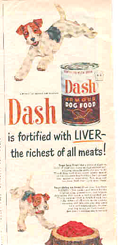 1950 Dash Dogfood WireHaired Fox Terrier Ad (Image1)
