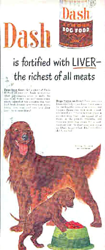 1950 Irish Setters Dash Dogfood Ad (Image1)