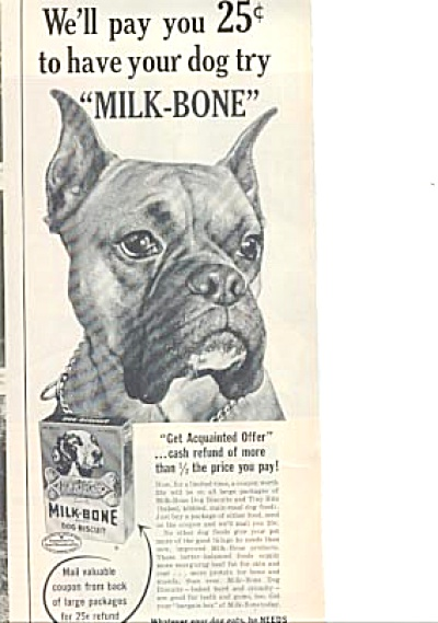 1954 CUTEST BOXER Milk Bone  Dog Ad (Image1)