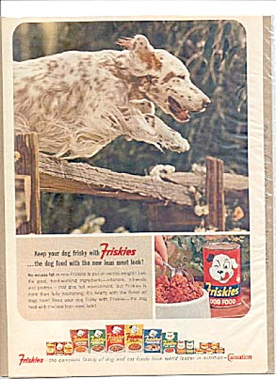 1964 Friskes Dog Food Bird Dog  Fence Ad (Image1)