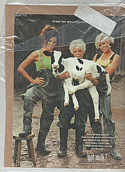 Got Milk? Dixie Chicks Girls Ad Wow