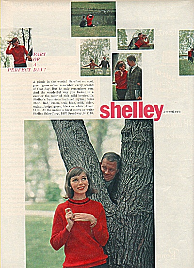Shelley sweaters ad 1958 (Image1)