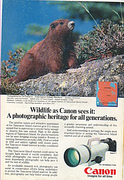 Canon Camera New F-1 Ad 1984
