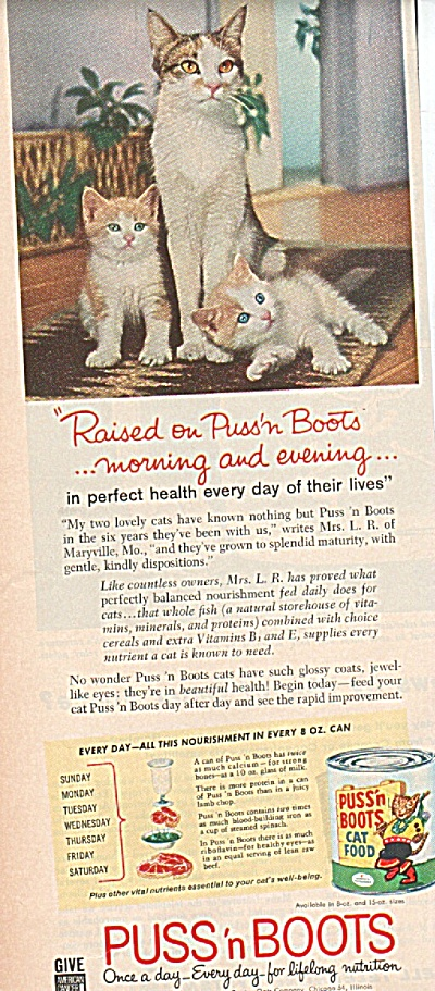 Puss 'n boots cat food ad 1960 IN PERFECT HEALTH (Image1)