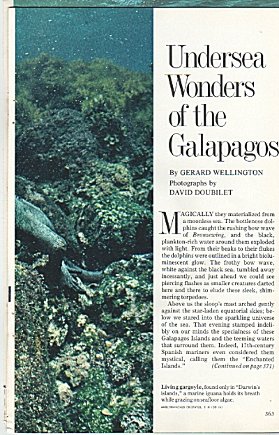 Undersea wonders of the GALAPAGOS  1978 (Image1)