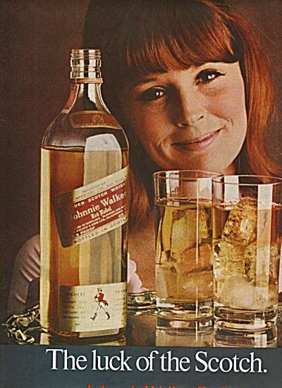 Brillo detergent -  Brillo ice bucket.  1970 (Image1)
