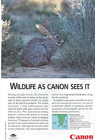 Canon camera ad 2002 (Image1)