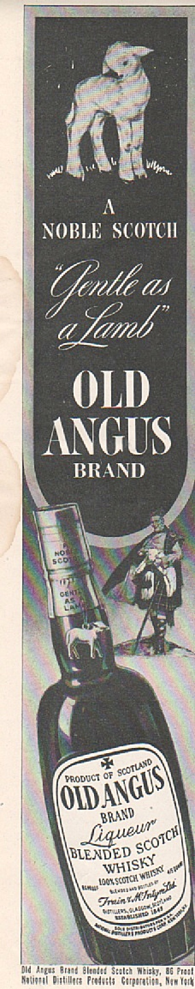 Old Angus blended scotch whisky ad 1946 (Image1)