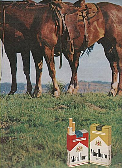 Marlboro cigarettes ad 1970 HORSES (Image1)