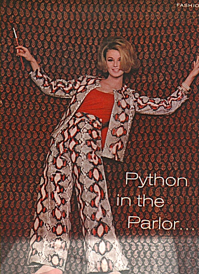 Fashion - Python inthe parlor - Professional model (Image1)