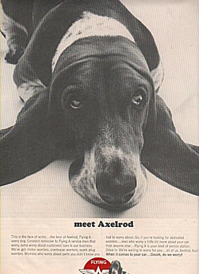 1965 Flying A Service Gas Station Print AD ALEXROD DOG (Image1)