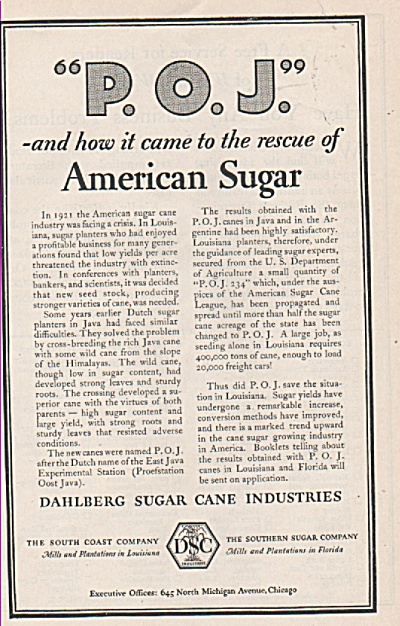 Dahlberg Sugar Cane Industries Ad 1928