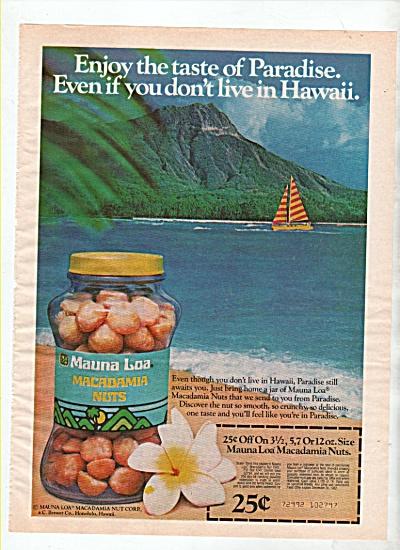 Mauna Loa Macadamia nuts ad 1982 (Image1)