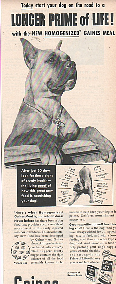 Gaines dog food ad 1953 (Image1)