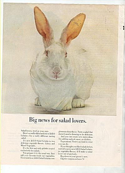 Jello-salad gelatin ad 1964 (Image1)
