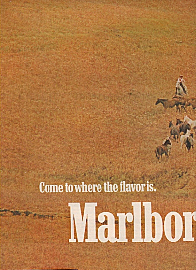 Marlboro cigarettes ad 1972 HERDS AND COWBOYS (Image1)
