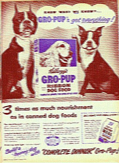 Kellogg's gro pup meal ad 1951 (Image1)