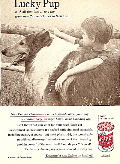 Gaines dog food ad 1956 (Image1)