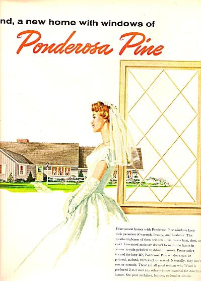 Ponderosa pine woodwork  ad 1958 (Image1)