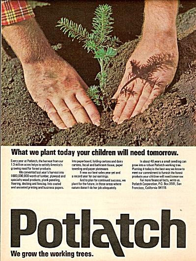 Potlatch ad 1977 (Image1)