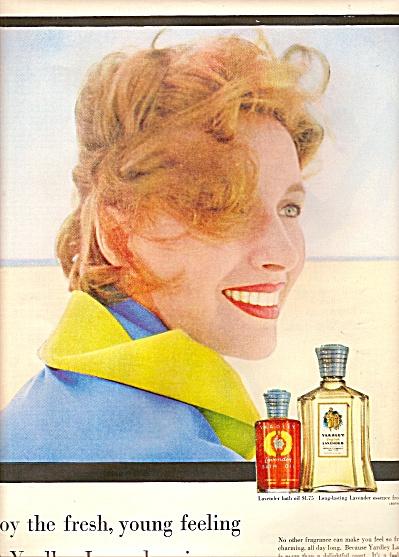 YaRDLEY lAVENDER ad 1955 (Image1)