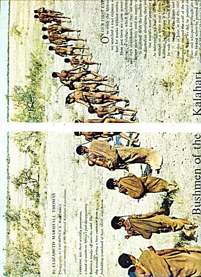 BUSHMEN OF THE KALAHARI  story 1963 (Image1)