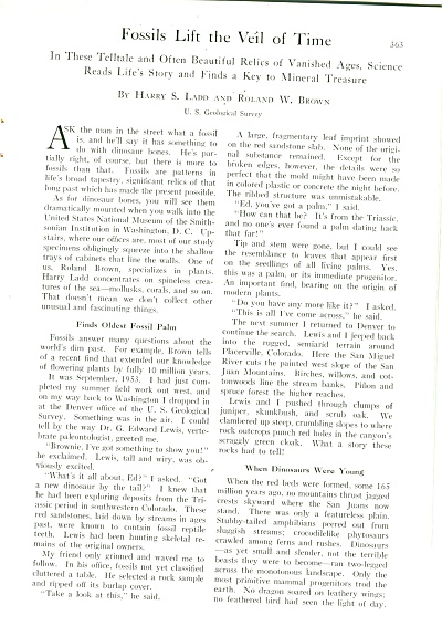 Fossils Lift The Veil Of Time - Story 1956