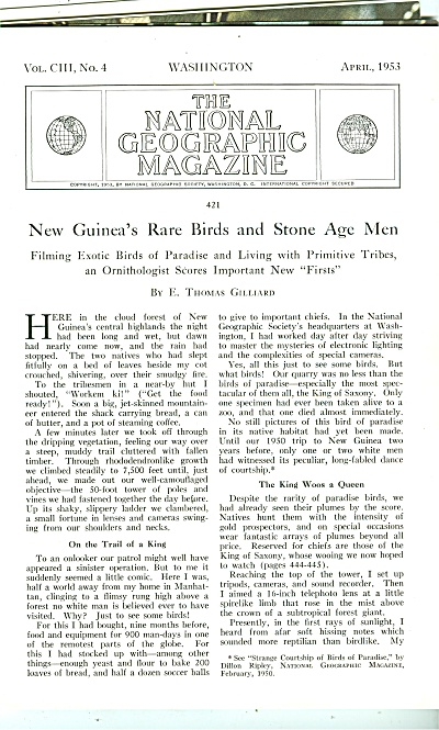 N Ew Guinea's Rare Birds And Stone Age Men -