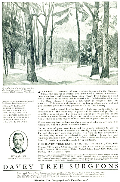 1920 DAVEY TREE SURGEONS AD Fa (Image1)
