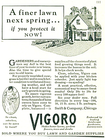 Vigoro ad -  October 1928 (Image1)
