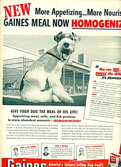Gaines dog meal ad (Image1)