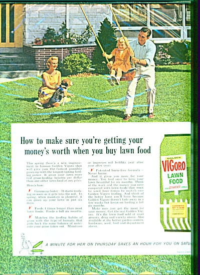 Vigoro lawn food ad (Image1)