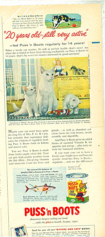 Puss 'n Boots cat food ad (Image1)