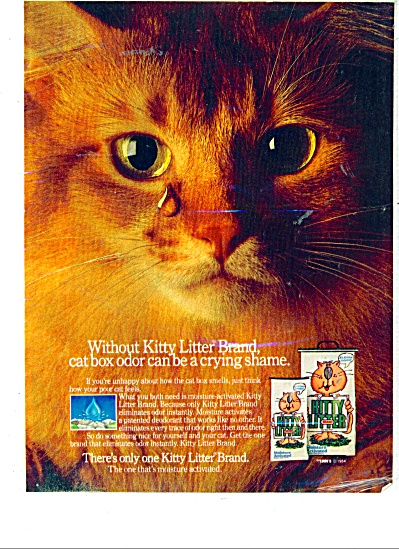Kitty Litter Brand ad (Image1)